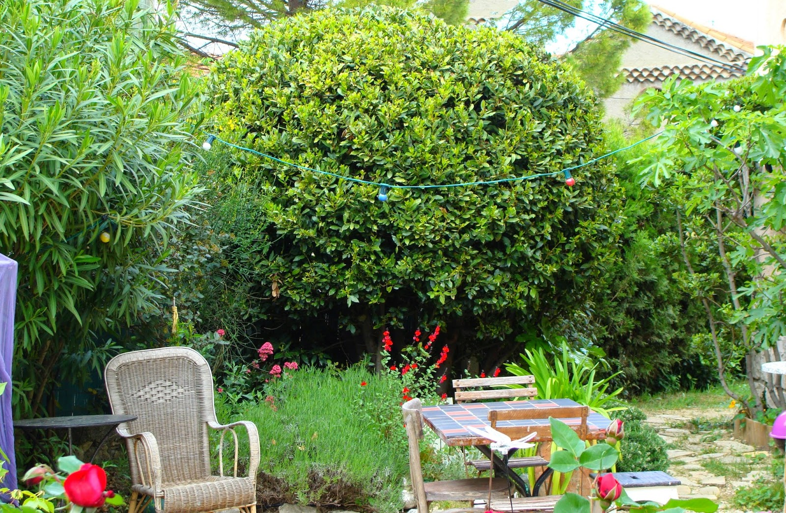 jardine et ris si c te dit j te les montre. Black Bedroom Furniture Sets. Home Design Ideas