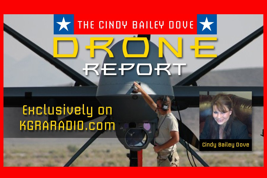 The Drone Report