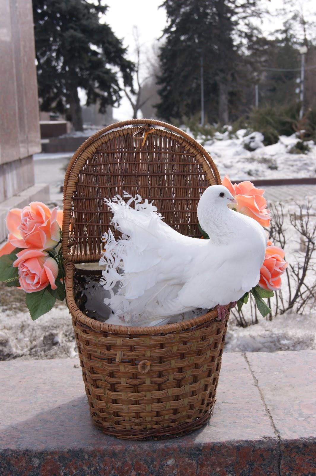 Поделка для свадьбы с голубями