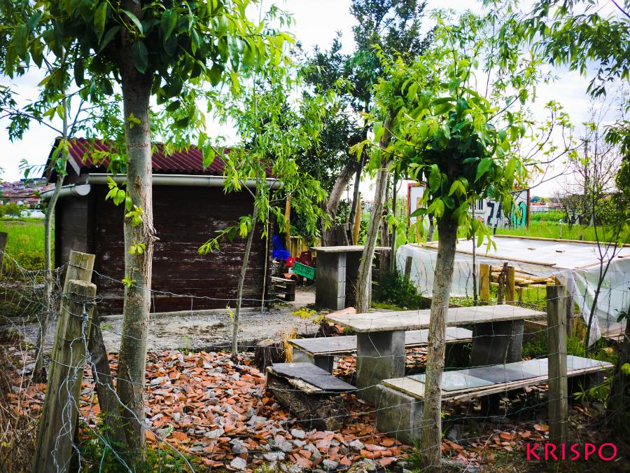 chabola con mesa y sillas en una huerta de hondarribia