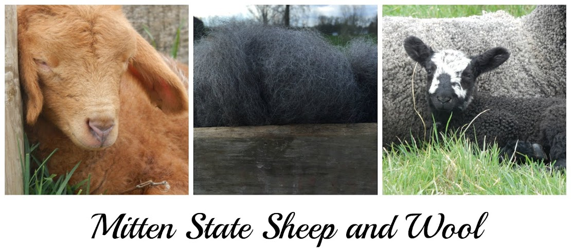 Mitten State Sheep & Wool