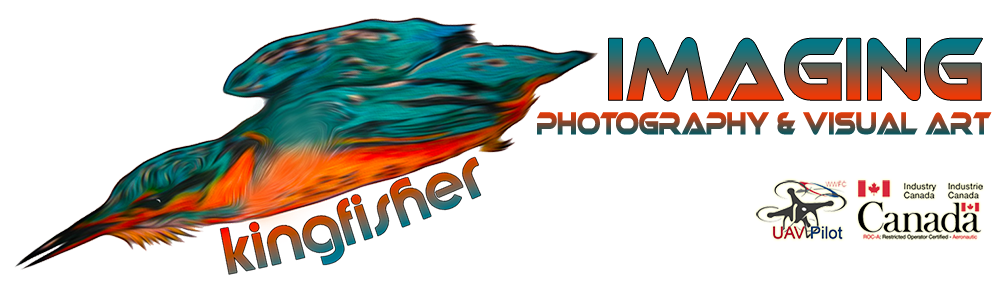 Kingfisher Imaging