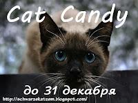Кошачья конфета