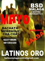 CURSO DE LATINOS ORO EN MAYO. AÑADIMOS SALSA A LA BACHATA, MERENGUE Y CHA CHA EN BSD MÁLAGA CENTRO.