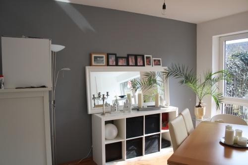 Wand grau Wohnzimmer