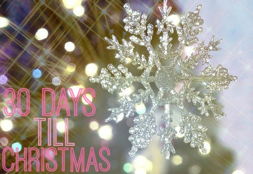 20 Christmas Beauty Gifts Ideas for Her 2013 ❤ |Confessions of this ...