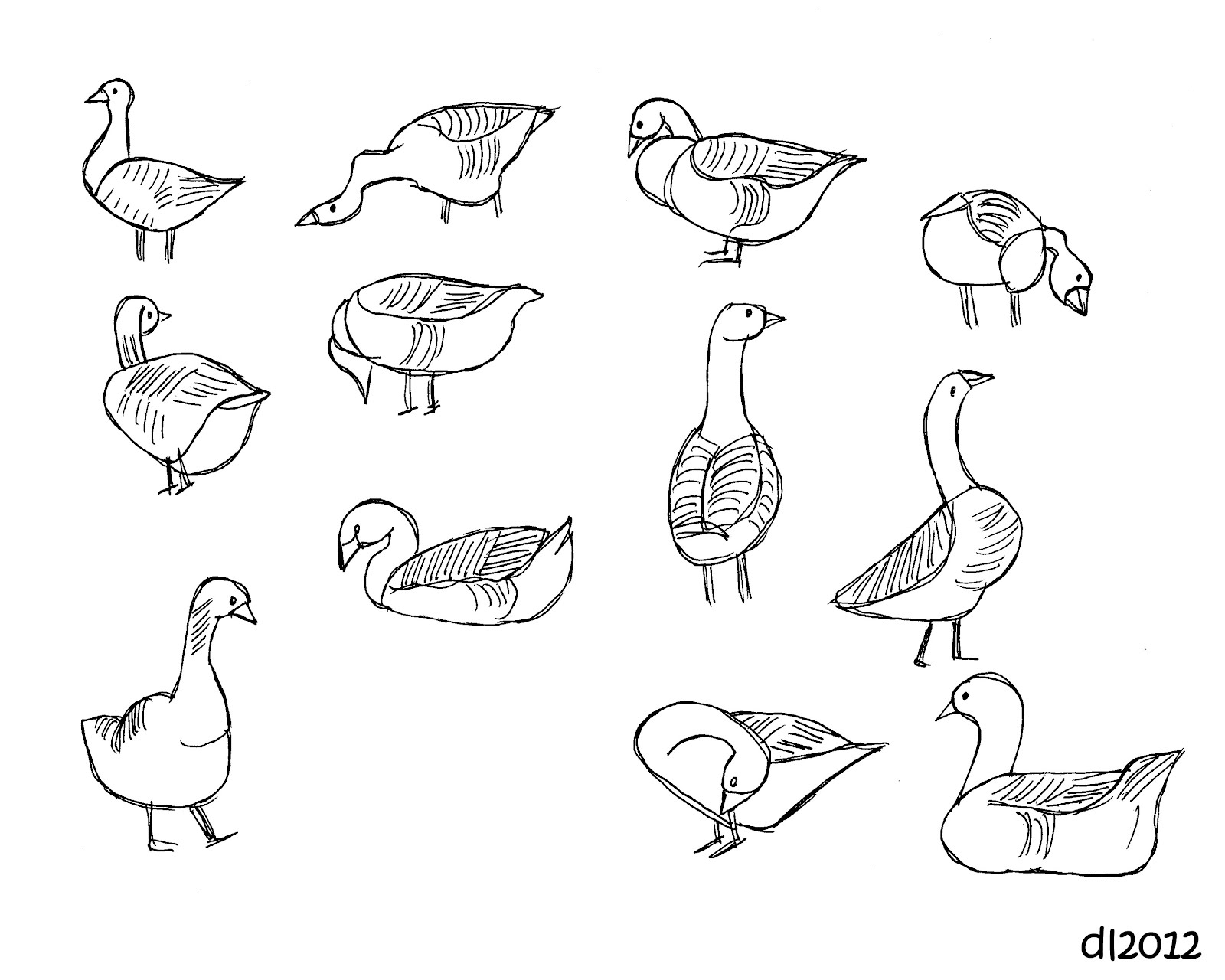 geese flying south coloring pages - photo#21