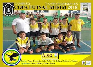 ADEC - CAMPEÃO CATEGORIA MIRIM 2018