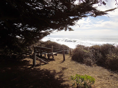 """Lovers Bench"" on Moonstone Beach in Cambria, © B. Radisavljevic"