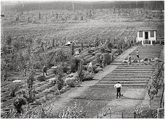 Essondale botanical garden