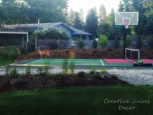 backyard pickleball sports court