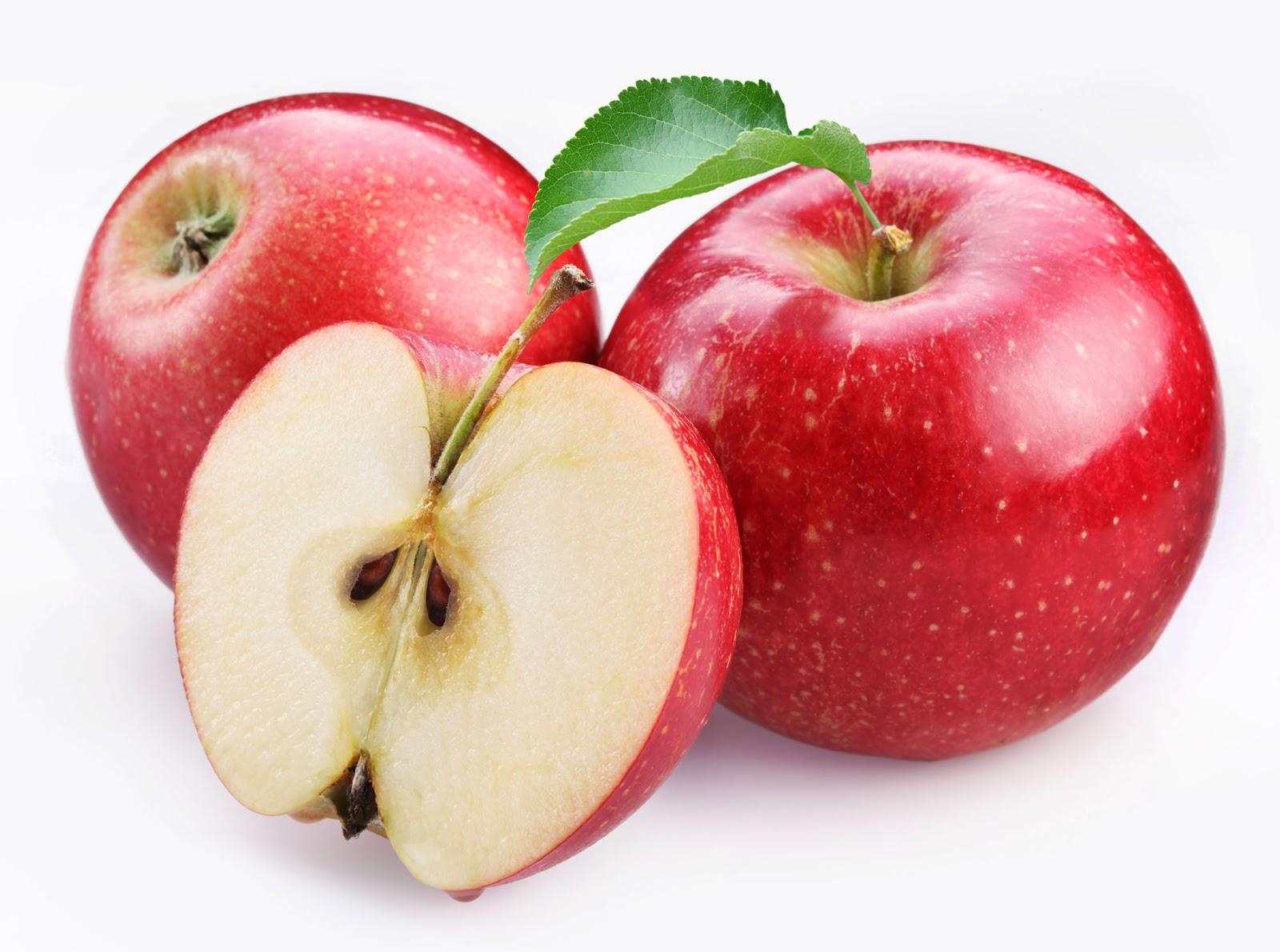 Plantas curativas y medicinales la manzana ayuda a - Pure de castanas y manzana ...