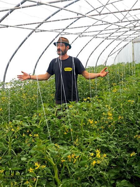 Riverford Organics citystyleandliving