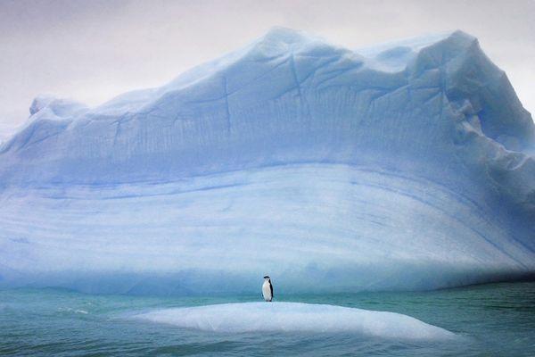 Die K Files Knuts Aussenposten Im Indischen Ozean The