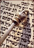 ENCUÉNTRAME A MITAD DEL CAMINO Torah_with_pointer