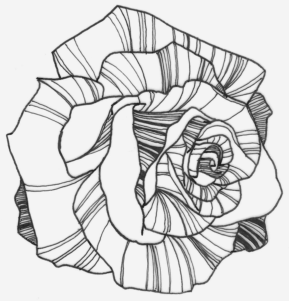 Line Art Rose Flower : Rose drawing flowers wallpapers