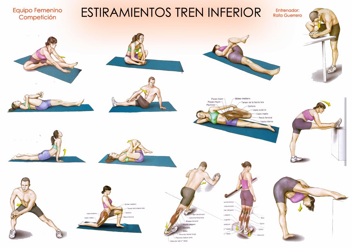 Ventana abierta a la Fisioterapia: Estiramientos. Antes y después de ...