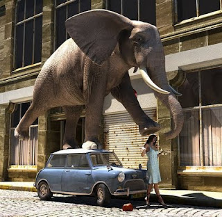 Funny Elephant Image