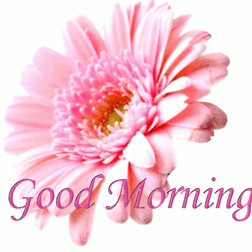 Religious Wallpapers: Wallpapers Of Good Morning Image