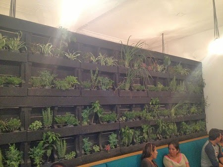Jardines Verticales con Palets Reciclados