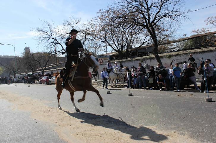 Mer gaucho-show