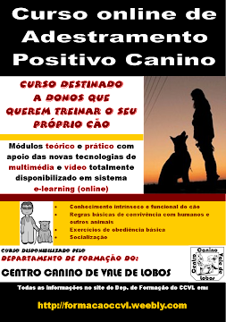 Curso On-line de Adestramento Positivo Canino (para donos)