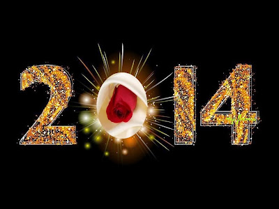 Happy New Year 2014 Evening