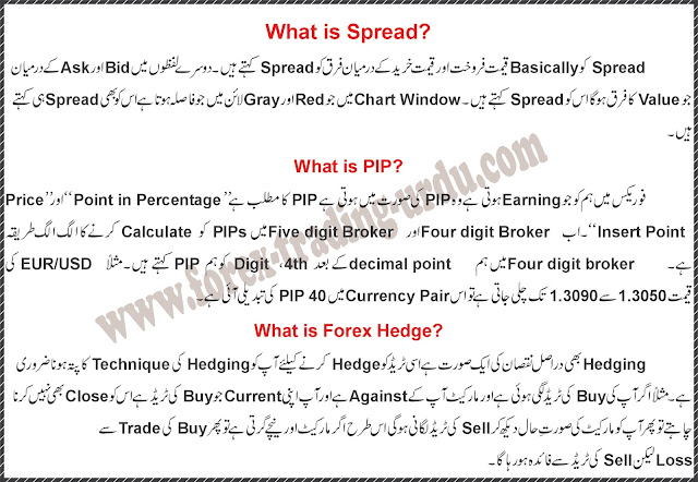 Forex Guide in Urdu