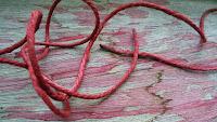 Sèchage au soleil du fil de lin tienté en rouge