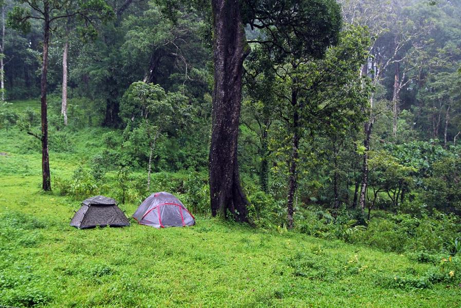 ecotourism in kerala essay