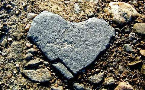 Hati Kita Menjadi Keras, Ternyata Penyebabnya Cuma Ini