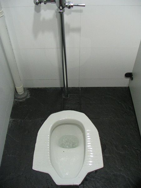 Adventures in parenting china 39 s bathrooms for Bathrooms in china