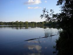 Shady Oak Lake