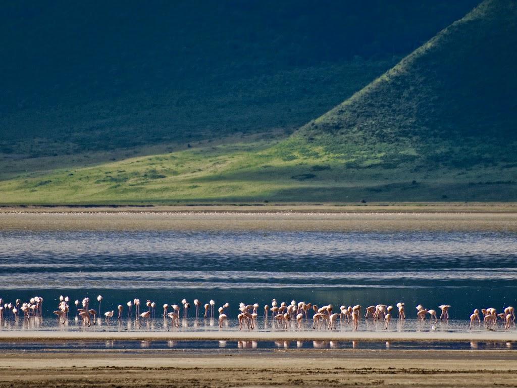 El cráter Ngorongoro – Tanzania