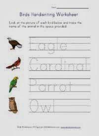 http://www.allkidsnetwork.com/worksheets/animals/birds/