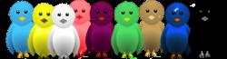 burung twitter pilihan warna