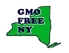 Join our GMO Free NY Coalition to pass a GMO Labeling  Bill by June 2013! For Events and Actions!