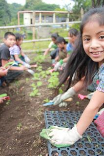 Pueblo a Pueblo School Gardens
