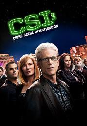 CSI: Crime Scene Investigation Temporada 16 Online