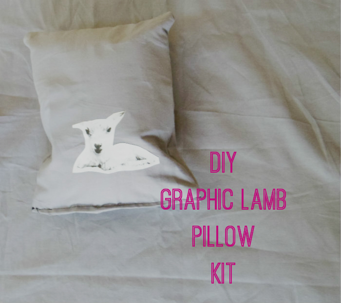 http://alicianeversleeps.blogspot.com/2014/03/diy-graphic-lamb-pillow.html