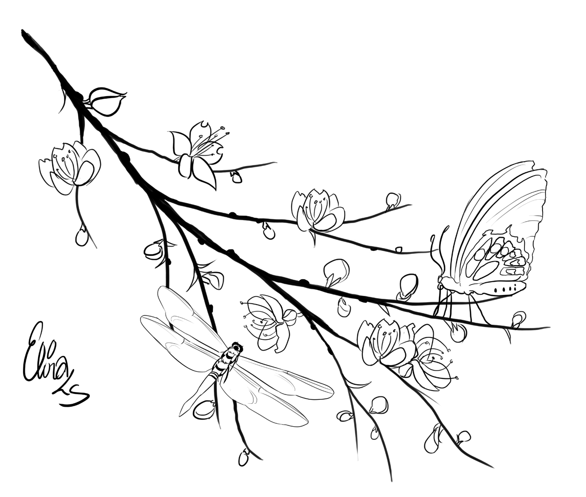 Free coloring pages of cherry blossom branch for Cherry blossom coloring pages
