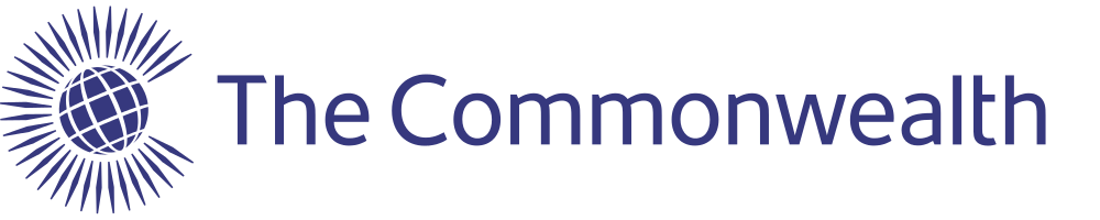 The Commonwealth Young Professionals Programme