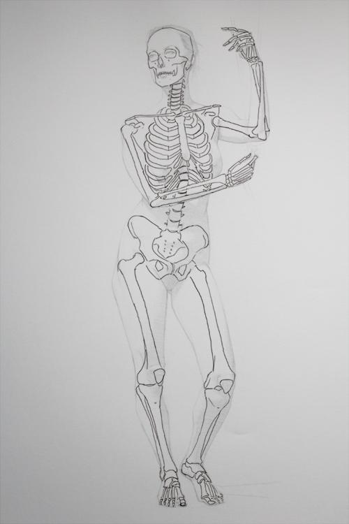 [Image: ruta+bones.jpg]