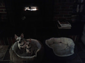 Bruno & Buster