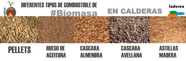 biomasa PELLETS aceituna almendra avellanas astillas madera