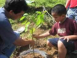 Invitemos a nuestros padres a cuidar el medio ambiente