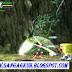 Game Megaman X8