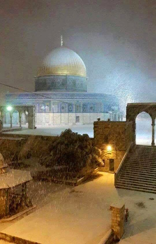 صور المسجد الأقصى وقبة الصخرة في منخفض هدى 2015 - بوابة ...