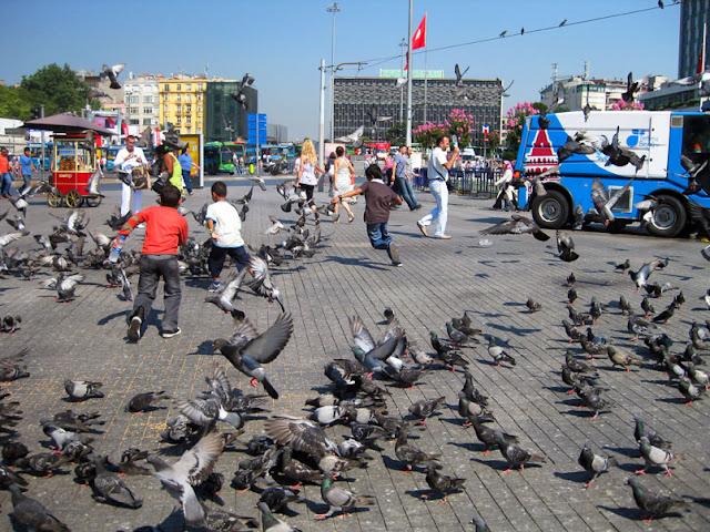 اشياء يمكنك القيام بها في تقسيم, ماذا تفعل في تقسيم اسطنبول,