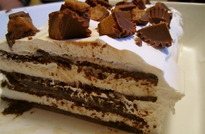 Stephanie Cooks: Easy Ice Cream Cake